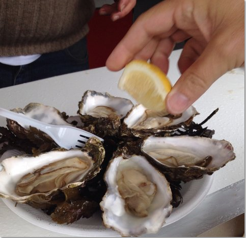 lemon on Killary Fjord oysters