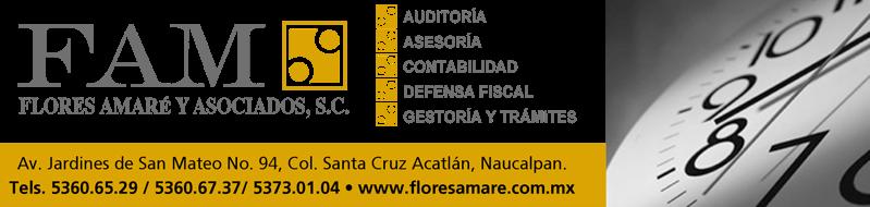 FLORES AMARE Y ASOCIADOS, S.C.