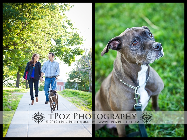 dogs in engagement pictures Riverside park