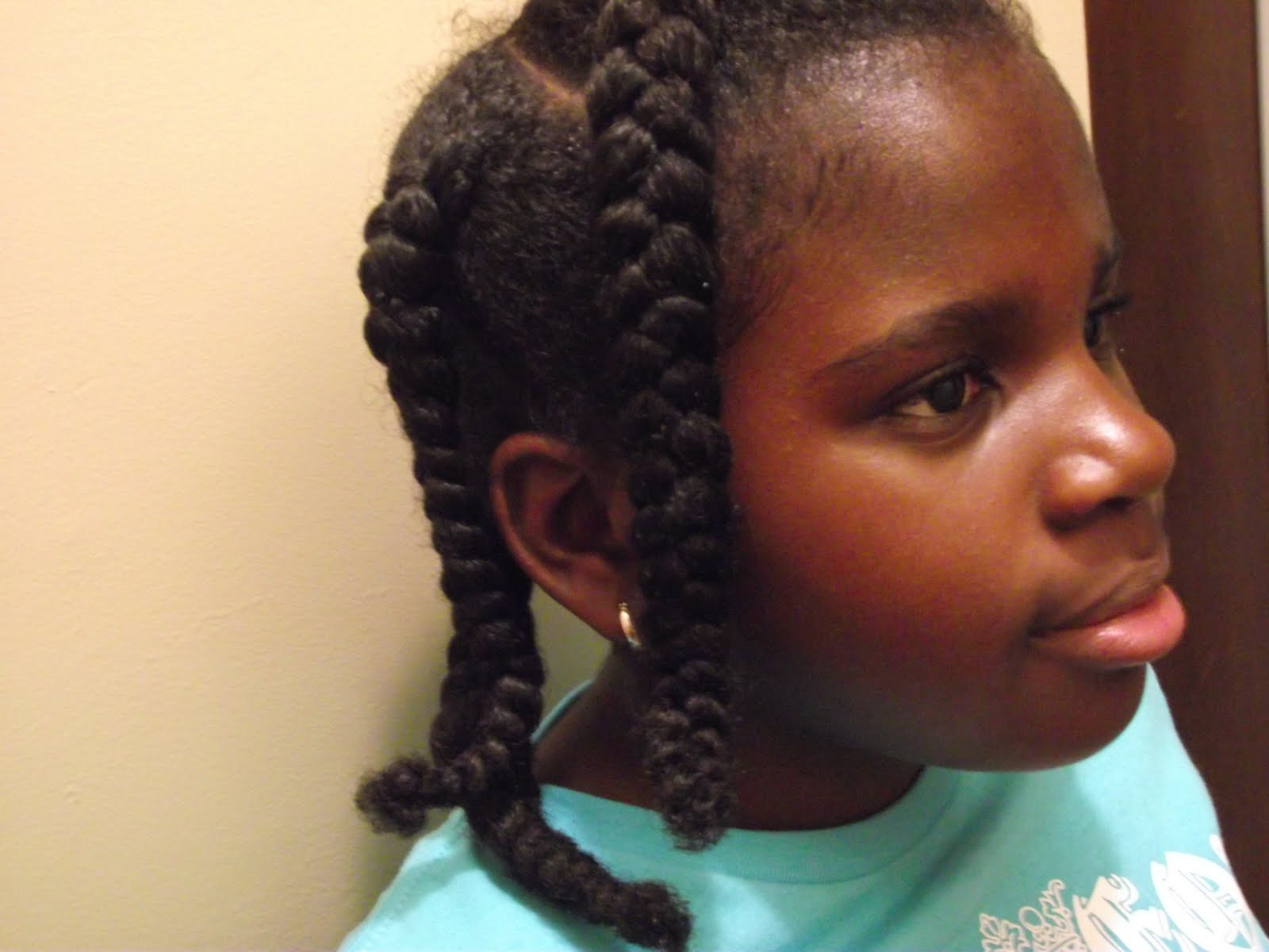Natural Braided Hairstyles Pinterest