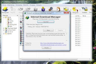 Download IDM 603 buil 2 full Việt Hóa