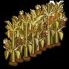 FarmVille Corn Maze Fence - FvLegends.Com