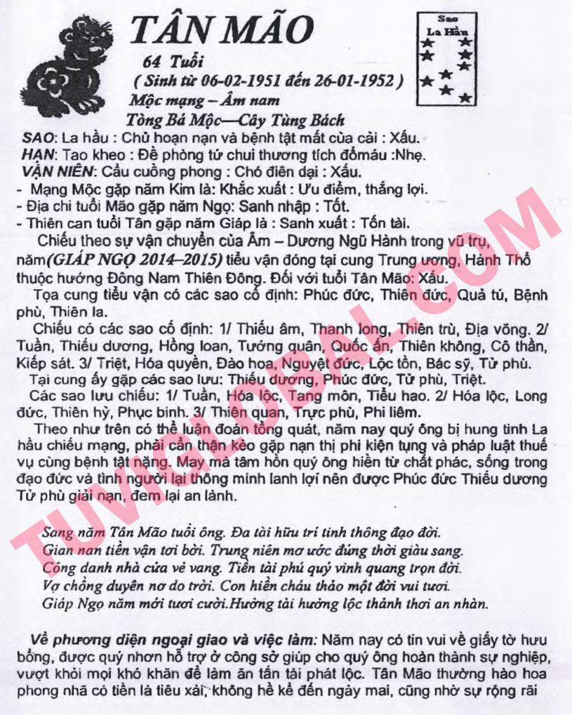 Xem tử vi tuổi Tân Mão nam mạng năm 2014 Giáp Ngọ