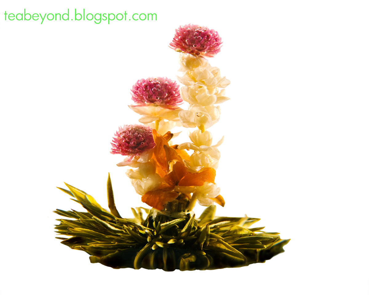 Tea beyond tea 101 what is blooming tea flower tea flowering tea