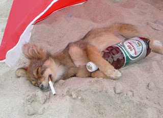 """""""Su questa spiaggia è severamente vietato..."""" Courtesy of: http://radiodenadie.blogspot.it/"""
