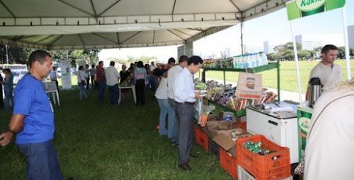 Consumidor recebe esclarecimento sobre como identificar produtos orgânicos em Feira