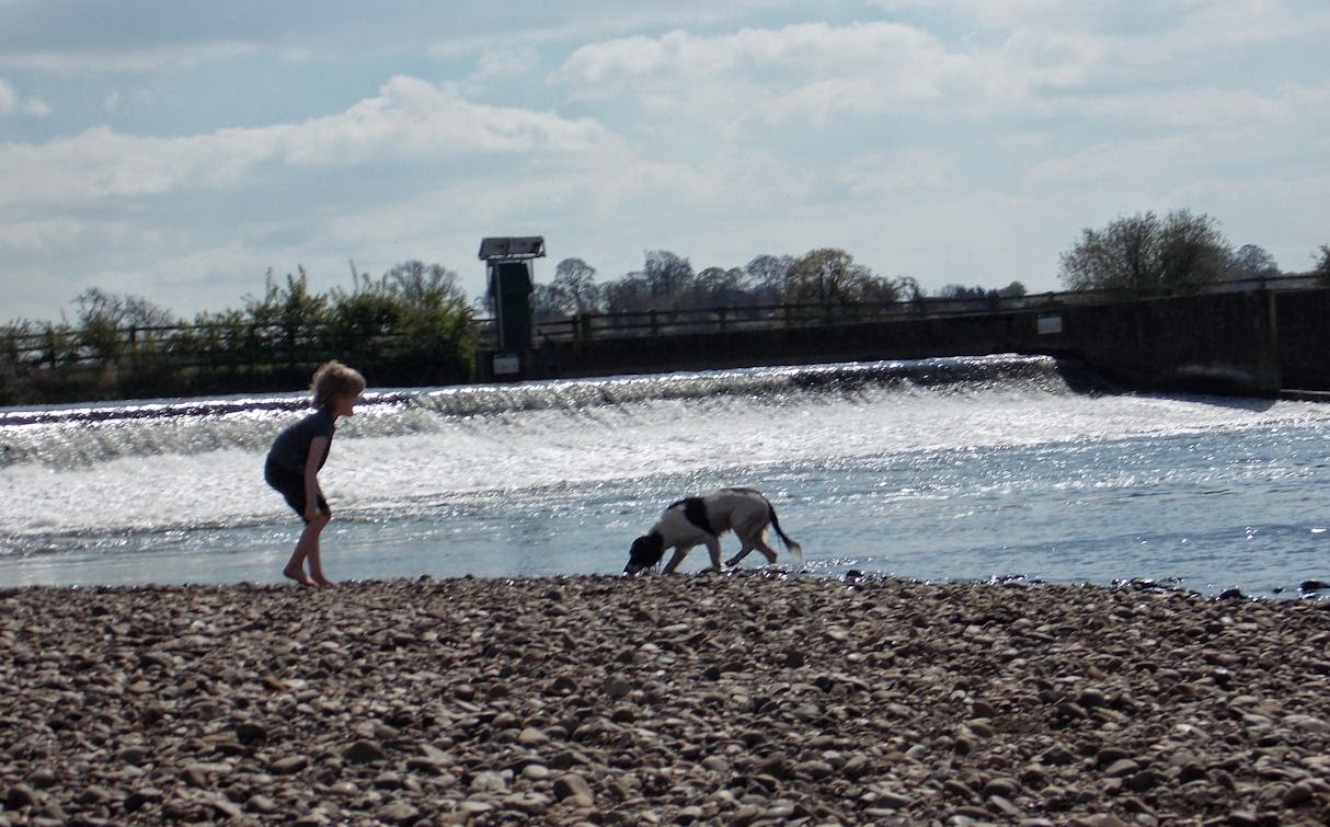 young boy and dog near river