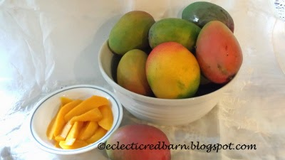 Eclectic Red Barn: Harvesting Mangoes