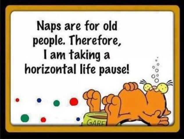 new definition of nap by garfield
