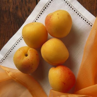Benefits of apricot, which is not related to vitamin b17