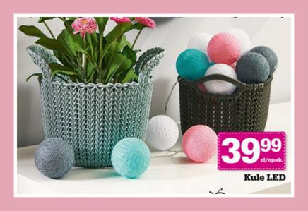 Cotton Balls znów w Biedronce