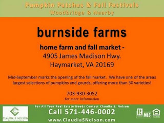Pumpkin Patches near Woodbridge Virginia 2015, Burnside Farms Haymarket