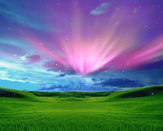windows xp backgrounds