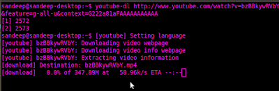 downloading video using youtube-dl