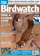 BIRDWATCH