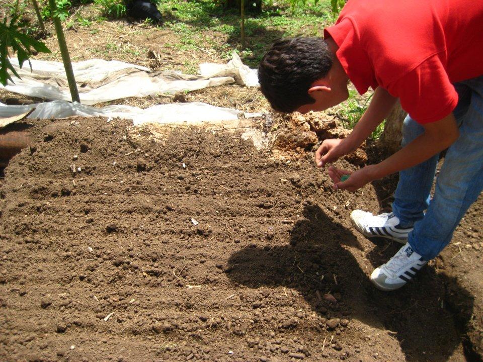 Full agro agosto 2012 - Preparacion de la tierra para sembrar ...