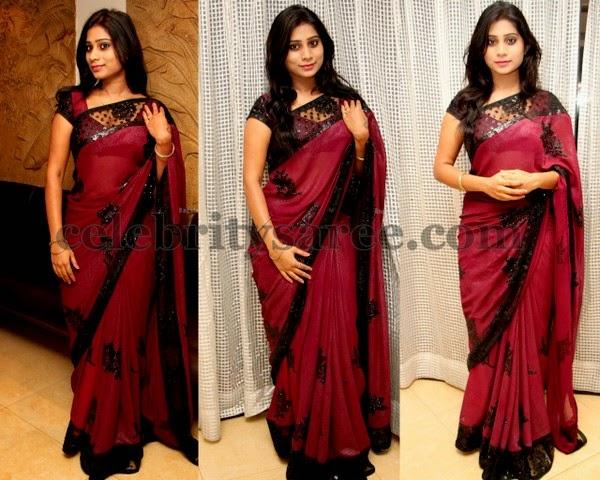 Mithuna Net Transparent Sari
