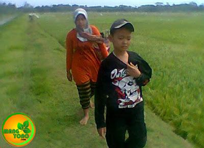 FOTO : Istri dan anak saya nganteuran ke sawah.