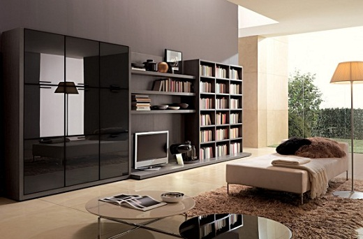 Living Room Decoration with Storage Furniture And Wall Units