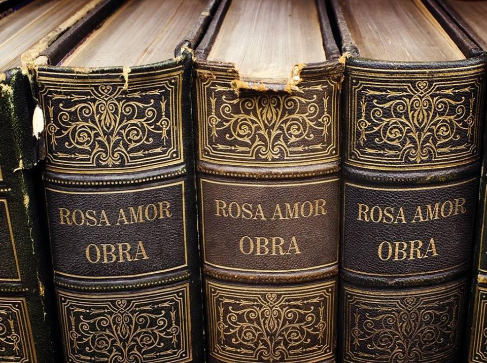 ROSA AMOR DEL OLMO OBRA