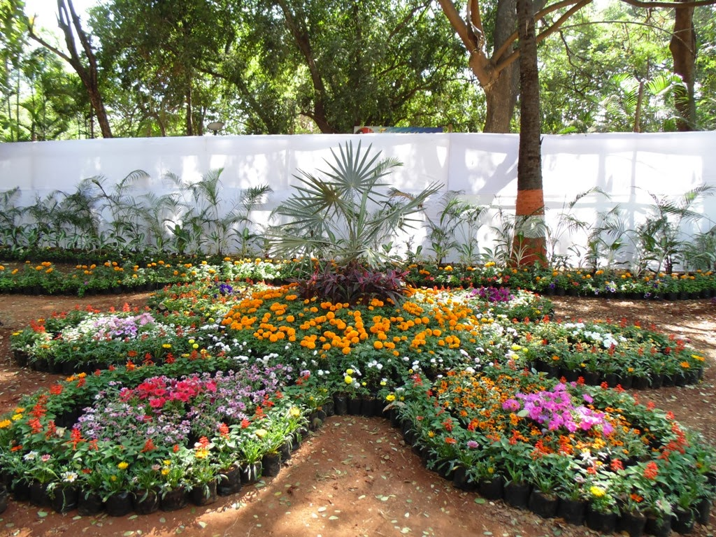 Design Green India A Visit To Annual Flower Show Buds N