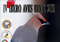 ELVAS: IV IBERO AVES 2019