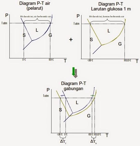 Bagaimana cara membaca diagram fasa mudah memahami kimia berubahnya titik beku ketika air masih murni tanpa zat terlarut apapun menjadi air yang sudah ditambah zat terlarut atau singkatnya menjadi larutan ccuart Images