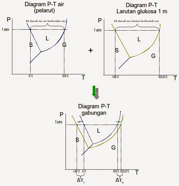 Bagaimana cara membaca diagram fasa mudah memahami kimia jadi yang dimaksud dengan perubahan titik beku air adalah berubahnya titik beku ketika air masih murni tanpa zat terlarut apapun menjadi air yang sudah ccuart Choice Image