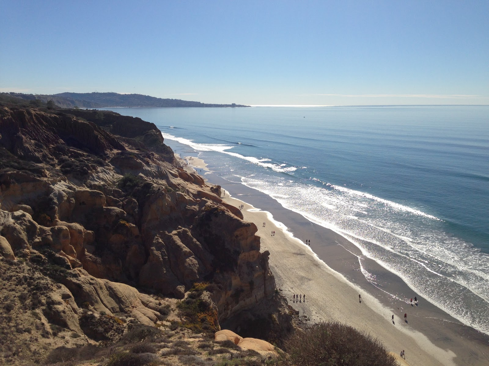 Can Dogs Hike At Torrey Pines