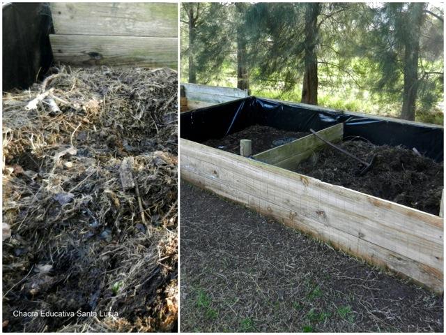 Compost en la compostera - Chacra Educativa Santa Lucía