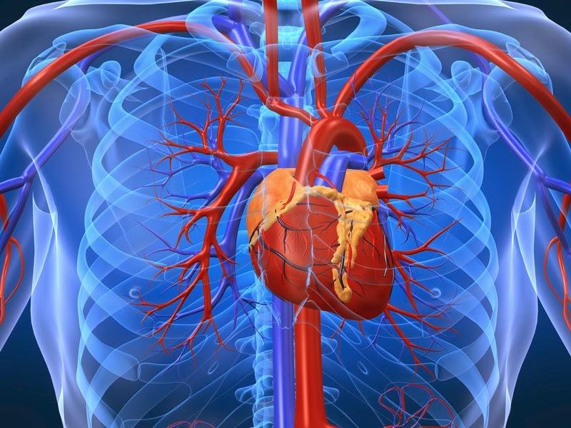 Cơn đau tim và tác dụng của nước