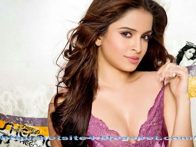 2014 Wallpapers Sheena Shahabadi Beautiful Bollywood Actress Looks Hot