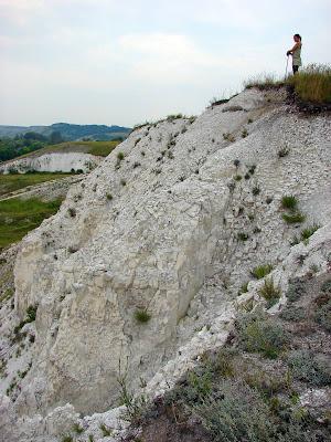 Геологические памятники Украины - Меловые холмы Двуречанского района