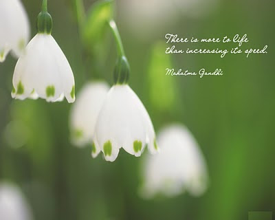 More Inspirational Quotes by Mahatma Gandhi