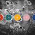 Taylor Color Icons
