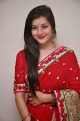 Priyal Gor Dazzling in Red Saree-thumbnail-7