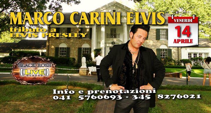 Marco Carini ELVIS - Elvis Tribute