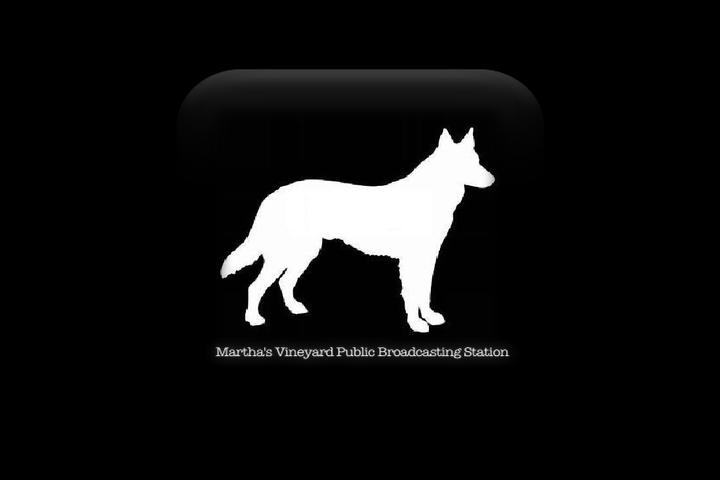 MVPBS - Martha's Vineyard