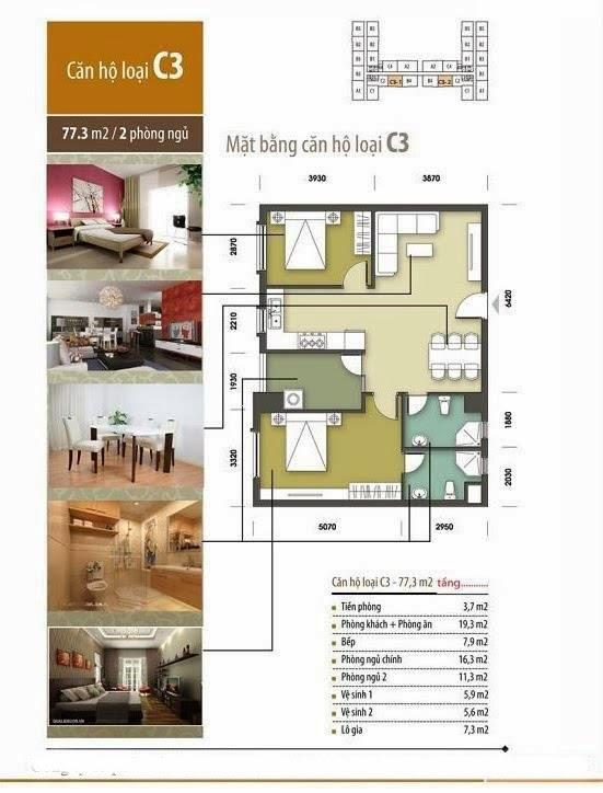 thiết kế chung cư tân tây đô