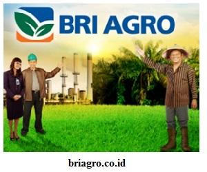 Lowongan Kerja BRI (Bank Rakyat Indonesia) Agroniaga Tbk