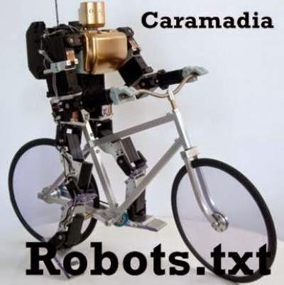 http://caramadia.blogspot.com/2014/10/cara-setting-tag-tajuk-robot-khusus-blog.html