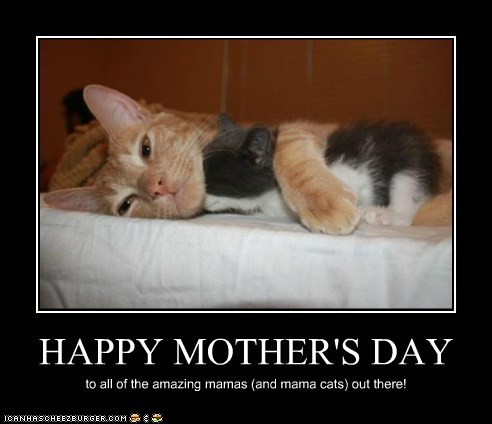 funny-pictures-happy-mothers-day.jpg