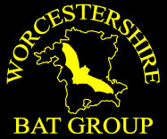 Worcestershire Bat Group