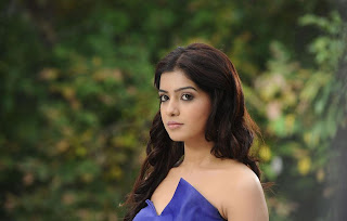 samantha bubly looking from dhookudu hot images