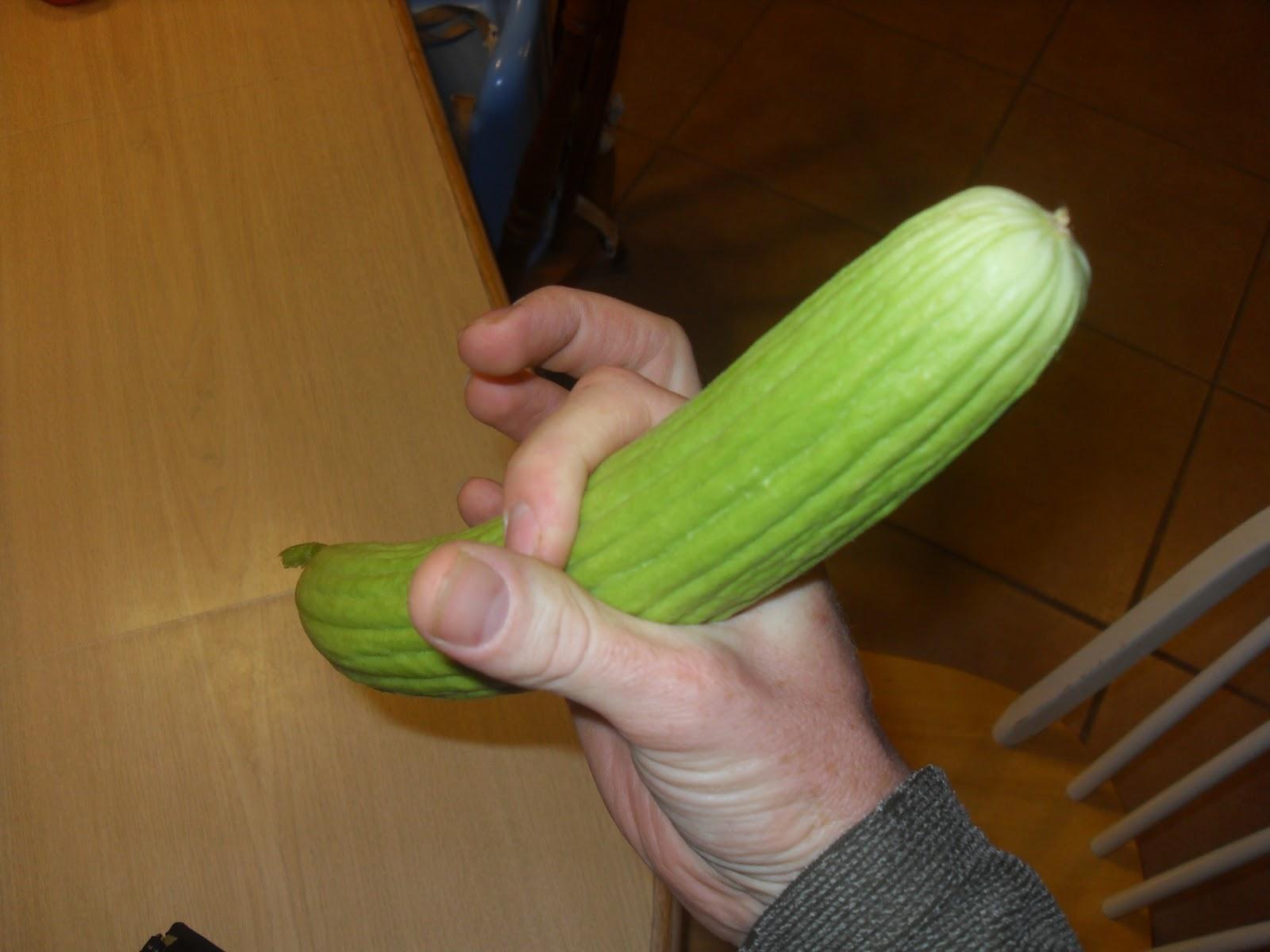 The Scientific Gardener The Armenian Cucumber