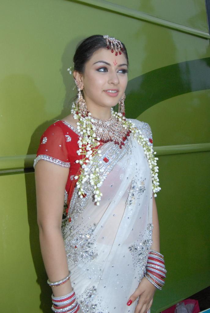 hansika motwani hot saree image, hansika motwani hot saree photo ...