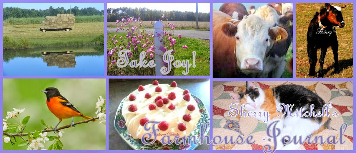 Take Joy! Sherry Mitchell's Farmhouse Journal