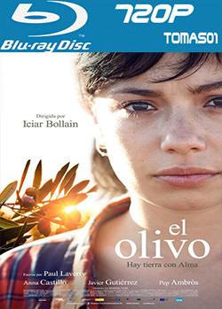 5 - El olivo (2016) [BDRip m720p/Castellano] [España] [Multi/MG]