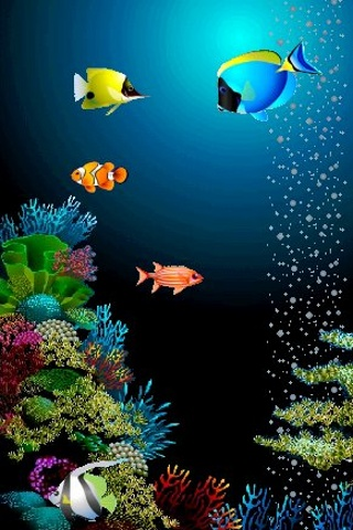 very nice iphone fish wallpaper amazing wallpapers