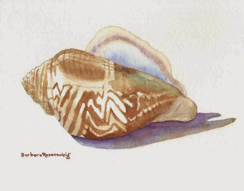 https://www.etsy.com/listing/222395820/conch-beach-shell-art-print-of-original?ref=shop_home_active_2